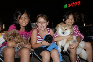 A universal truth... all 9-year old girls, not matter where in the world they are from, LOVE puppies!