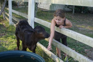 Me feeding Lucky.  I gave her a bucketful of milk twice a day.  She would stick her whole head in the bucket and get milk all the way up to her ears!  It was SO funny.  Sorry I didn't get a picture!