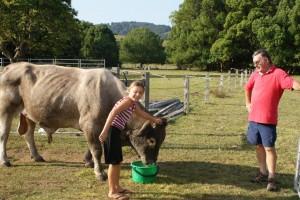 This is me and Ian feeding the bull!  Nice bull.