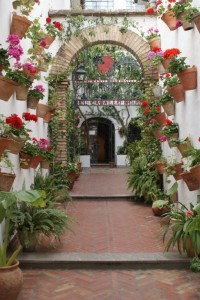 If you are lucky enough to catch someone leaving their building, you might get to peak inside their courtyard and see one of the spectacular courtyard gardens that Cordoba is known for.  One weekend a year they have a courtyard tour where buildings vie for the honor of being the courtyard-of-the-year.  This was a winner one year.