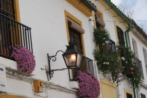 The historic city of Cordoba is within the old city walls.  The streets are narrow, cobblestoned, and every window is dripping with flowers!